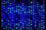 DNA-Sequence_124450252-1024x666